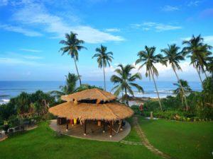Отдохнуть весной на Шри-Ланке